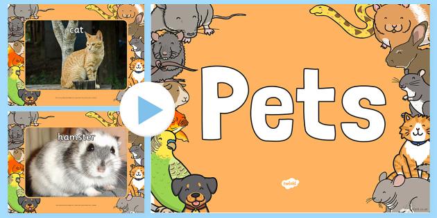 Pets Photo PowerPoint - pets, animals, pets photos, powerpoint, photo powerpoint, pets powerpoint, animals powerpoint, pets images, animals images