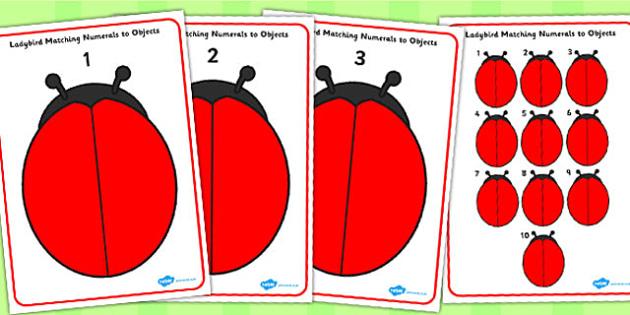 Ladybird Matching Numerals to Objects Playdough Mats - playdough