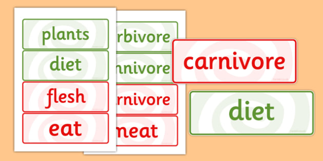 Herbivores Omnivores and Carnivores Word Cards - word cards