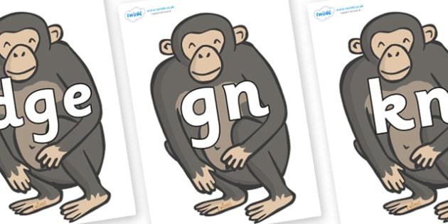 Silent Letters on Chimpanzees - Silent Letters, silent letter, letter blend, consonant, consonants, digraph, trigraph, A-Z letters, literacy, alphabet, letters, alternative sounds