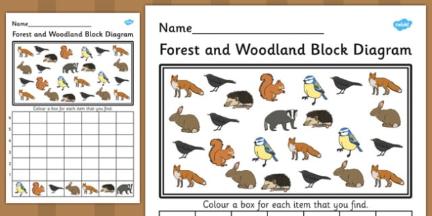 Forest and Woodland Block Diagram Activity Worksheet - bar graph