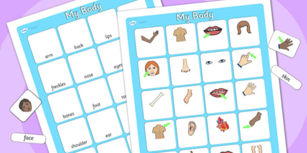 My Body Vocabulary Matching Mat - my body, vocabulary poster, poster, my body vocabulary, display poster, information poster, poster for display