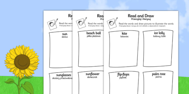 Summer Read and Draw Activity Sheet Polish Translation - polish, seasons, weather, activities, worksheet