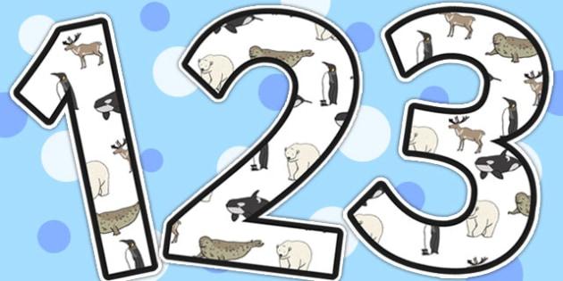 Polar Animals Display Numbers - Polar, Animal, Display, Numbers