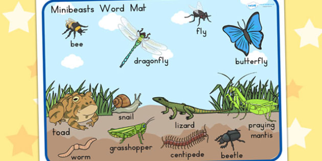 Minibeasts Scene Word Mat - word mats, keywords, keyword mat