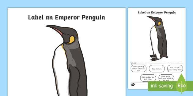 Label an Emperor Penguin Activity Sheet - penguin, activity
