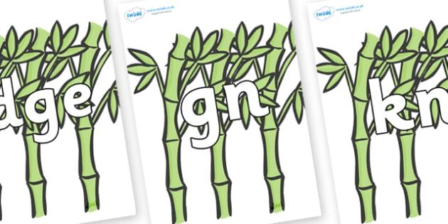 Silent Letters on Bamboo - Silent Letters, silent letter, letter blend, consonant, consonants, digraph, trigraph, A-Z letters, literacy, alphabet, letters, alternative sounds