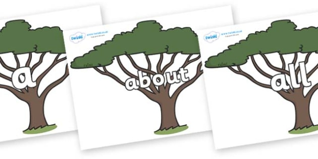 100 High Frequency Words on Acacia Trees - High frequency words, hfw, DfES Letters and Sounds, Letters and Sounds, display words