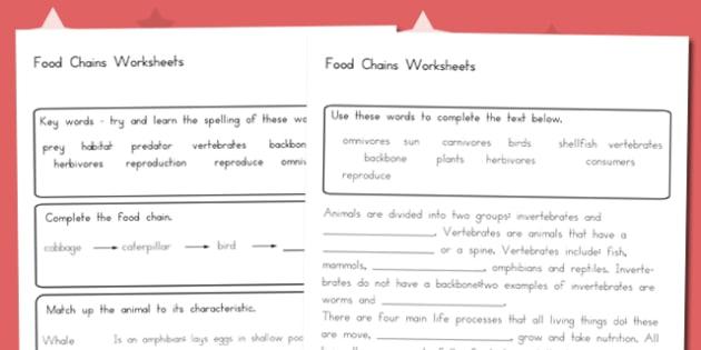 Food Chain Worksheet - australia, food chain, food, chain, worksheet