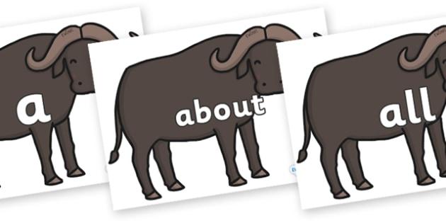 100 High Frequency Words on Buffalos - High frequency words, hfw, DfES Letters and Sounds, Letters and Sounds, display words