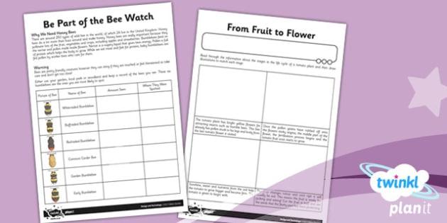 D&T: Edible Garden LKS2 Unit Home Learning Tasks