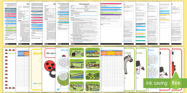 EYFS Adult Input Planning and Resource Pack to Support Teaching on What the Ladybird Heard-Australia - What the Ladybird Heard, Julia Donaldson, minibeasts, EYFS, early years planning, adult led.,Austral
