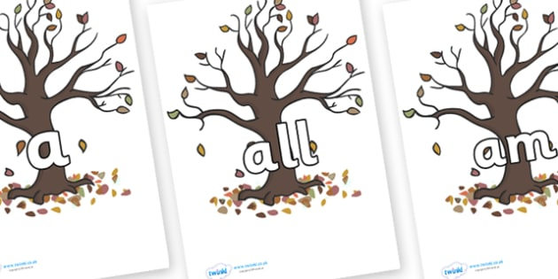 Foundation Stage 2 Keywords on Autumn Trees - FS2, CLL, keywords, Communication language and literacy,  Display, Key words, high frequency words, foundation stage literacy, DfES Letters and Sounds, Letters and Sounds, spelling