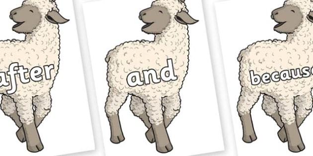 Connectives on Lamb - Connectives, VCOP, connective resources, connectives display words, connective displays