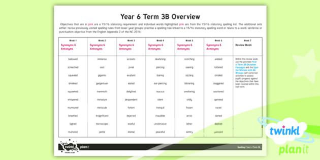 PlanIt Y6 Spelling Term 3B Overview