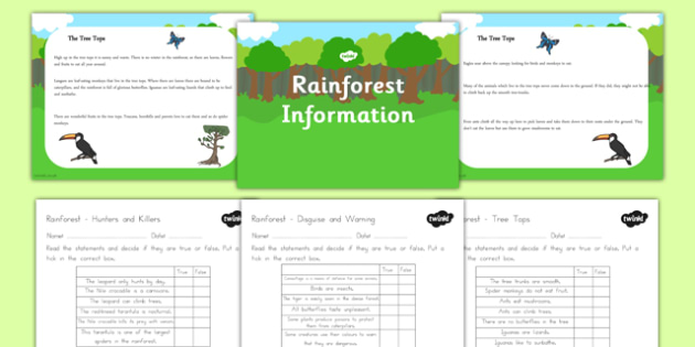 Rainforest Information PowerPoint and Worksheet Pack - australia