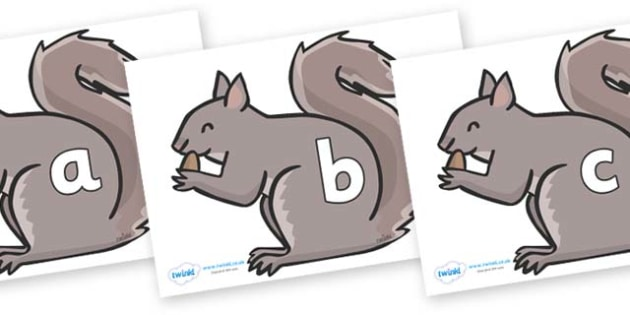 Phase 2 Phonemes on Grey Squirrels - Phonemes, phoneme, Phase 2, Phase two, Foundation, Literacy, Letters and Sounds, DfES, display
