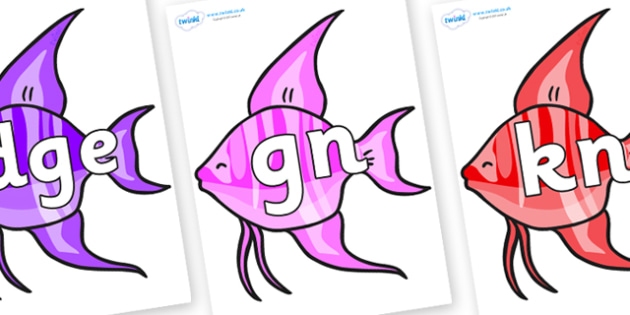 Silent Letters on Angelfish - Silent Letters, silent letter, letter blend, consonant, consonants, digraph, trigraph, A-Z letters, literacy, alphabet, letters, alternative sounds