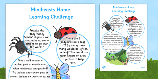 Minibeasts Home Learning Challenge Sheet Nursery FS1 - EYFS, homework, Early years, insects