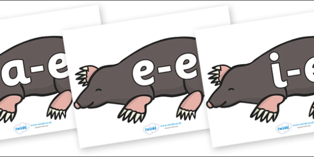 Modifying E Letters on Moles - Modifying E, letters, modify, Phase 5, Phase five, alternative spellings for phonemes, DfES letters and Sounds