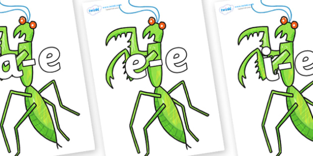 Modifying E Letters on Praying Mantis to Support Teaching on The Bad Tempered Ladybird - Modifying E, letters, modify, Phase 5, Phase five, alternative spellings for phonemes, DfES letters and Sounds