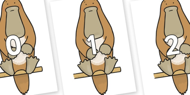 Numbers 0-100 on Platypus to Support Teaching on The Great Pet Sale - 0-100, foundation stage numeracy, Number recognition, Number flashcards, counting, number frieze, Display numbers, number posters