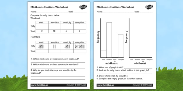 Minibeast Habitat Graphs Worksheet - habitats worksheets, habitats, minibeasts, minibeast habitats, insect habitats, interpreting graphs, bar chart, ks2