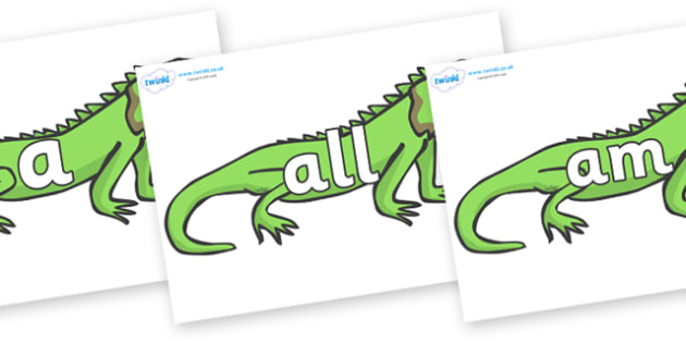 Foundation Stage 2 Keywords on Iguanas - FS2, CLL, keywords, Communication language and literacy,  Display, Key words, high frequency words, foundation stage literacy, DfES Letters and Sounds, Letters and Sounds, spelling