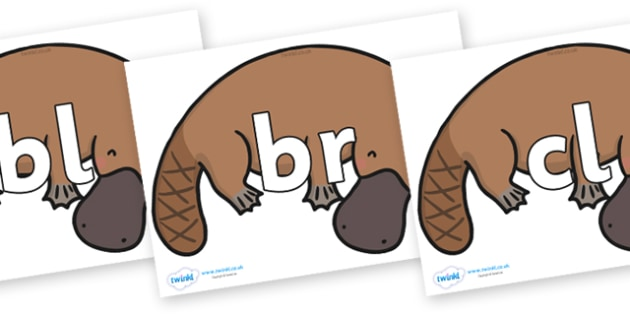 Initial Letter Blends on Platypus - Initial Letters, initial letter, letter blend, letter blends, consonant, consonants, digraph, trigraph, literacy, alphabet, letters, foundation stage literacy