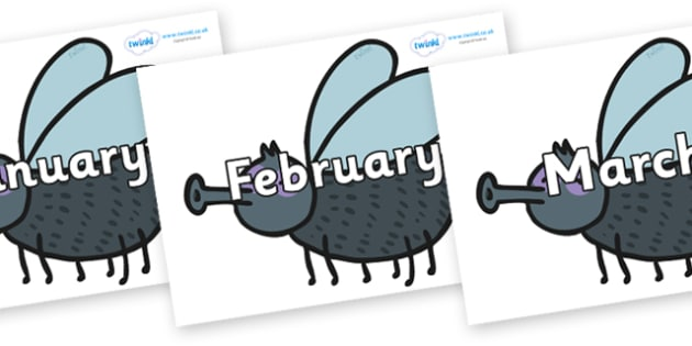 Months of the Year on Flies - Months of the Year, Months poster, Months display, display, poster, frieze, Months, month, January, February, March, April, May, June, July, August, September