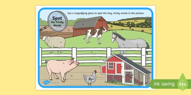 Phase 3 Tricky Words Farm Scene Magnifying Glass Activity Sheet, worksheet