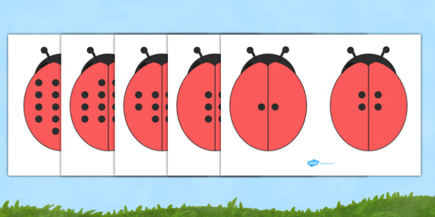 Double The Ladybird Spots Visual Aid - Ladybirds, doubling, doubles, aid, visual aid, double, numeracy, ladybirds, adding, multiplication, calculation, minibeasts, foundation numeracy