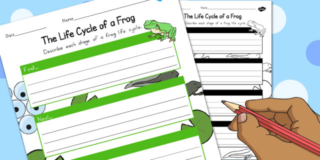 The Life Cycle of a Frog Writing Frame - australia, life cycle