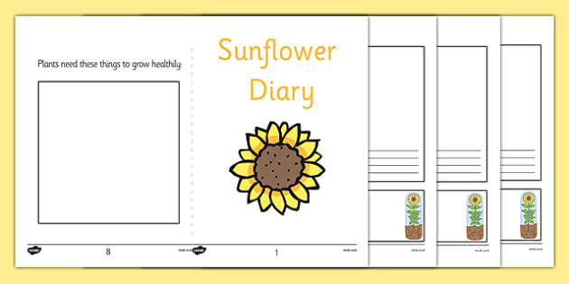Sunflower Diary Writing Frame - sunflower, diary writing frame, writing frame, diary, journal, planner, my diary, booklet, page border, writing template, record, growing, flowers, plant diary, activity, filling in, investigation