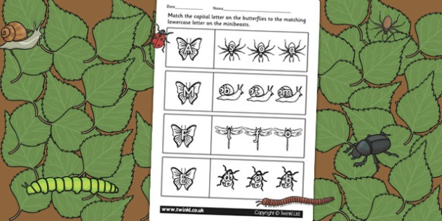 Minibeast Themed Capital Letter Matching Worksheet - uppercase