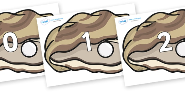 Numbers 0-31 on Oysters - 0-31, foundation stage numeracy, Number recognition, Number flashcards, counting, number frieze, Display numbers, number posters