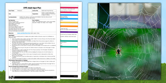 Spiderweb String Paintings EYFS Adult Input Plan and Resource Pack - lesson plan