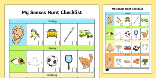 EYFS My Senses Hunt Checklist