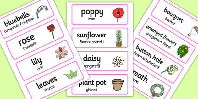 Florists Word Cards Romanian Translation - romanian, florists, word cards