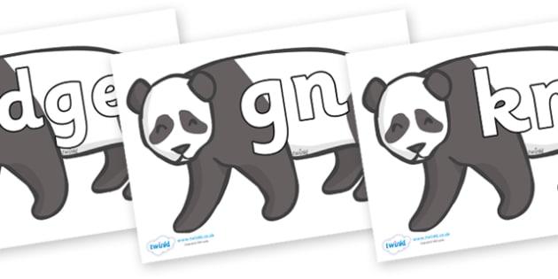Silent Letters on Pandas - Silent Letters, silent letter, letter blend, consonant, consonants, digraph, trigraph, A-Z letters, literacy, alphabet, letters, alternative sounds