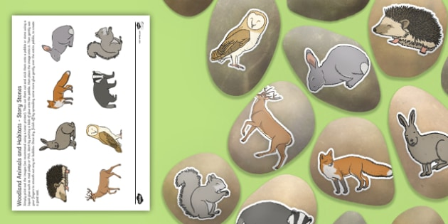 Woodland Animals and Habitats Story Stone Image Cut-Outs - woodland, animals, habitats, story stone