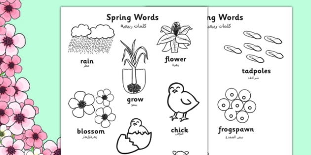 Spring Words Colouring Sheets Arabic Translation - arabic, spring, seasons, colour, weather