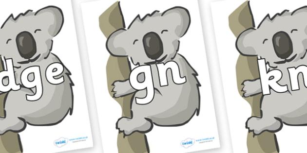 Silent Letters on Koalas - Silent Letters, silent letter, letter blend, consonant, consonants, digraph, trigraph, A-Z letters, literacy, alphabet, letters, alternative sounds