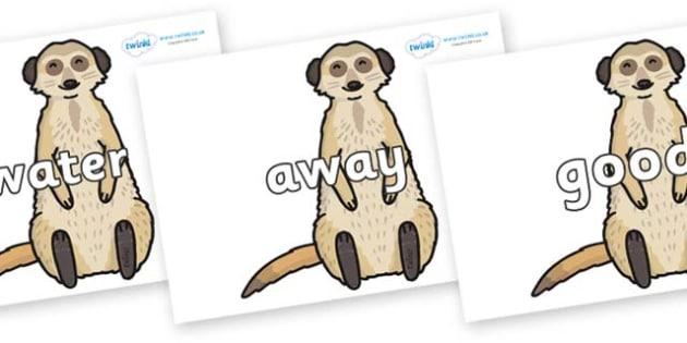 Next 200 Common Words on Meerkats - Next 200 Common Words on  - DfES Letters and Sounds, Letters and Sounds, Letters and sounds words, Common words, 200 common words
