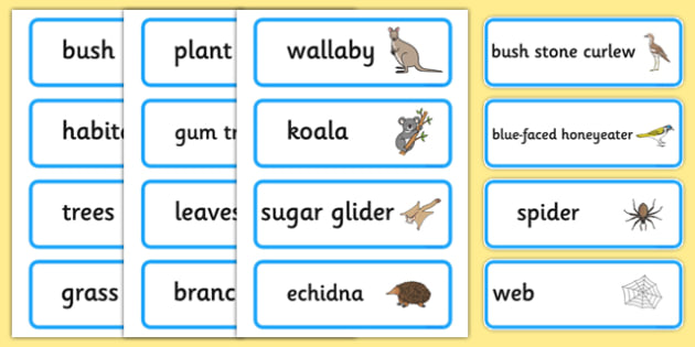 Bush Habitat Word Cards - australia, Science, Year 1, Habitats, Australian Curriculum, Bush, Living, Living Adventure, Environment, Living Things, Animals, Plants, Word Cards