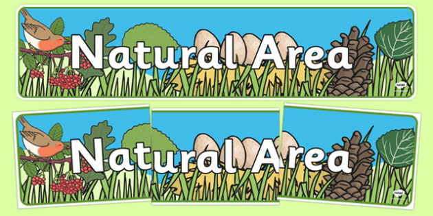 Natural Area Display Banner - nature, science, animals, garden, outdoors, wildlife, pond, birds, coutryside, allotment, minibeasts