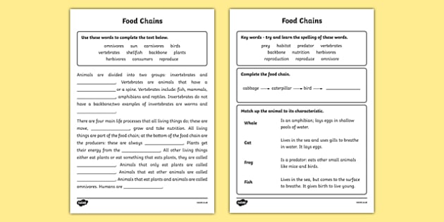 Food Chain Worksheet - food chains, animals, classifying animals, what animals eat, herbivores and carnivores, feeding relationships, vertibrates, ks2