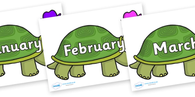 Months of the Year on Tortoise - Months of the Year, Months poster, Months display, display, poster, frieze, Months, month, January, February, March, April, May, June, July, August, September