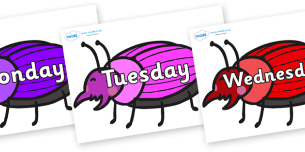 Days of the Week on Beetles - Days of the Week, Weeks poster, week, display, poster, frieze, Days, Day, Monday, Tuesday, Wednesday, Thursday, Friday, Saturday, Sunday