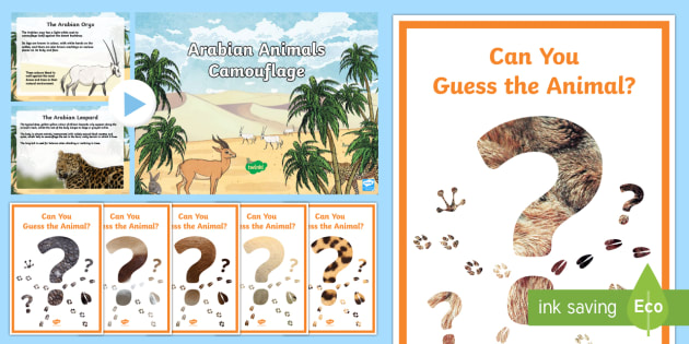 Arabian Animals Camouflage PowerPoint - Science, Living World, Arabian, animals, camouflage, adaptation
